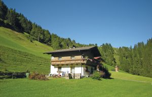 Holiday rental - Mühlbach, Austria - ASA916