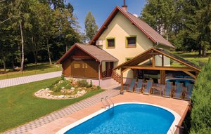 Holiday home - Pozega-Brestovac, Croatia - CCS020