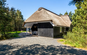 Holiday home DAN-A3074 in Blåvand for 8 people - image 29176491