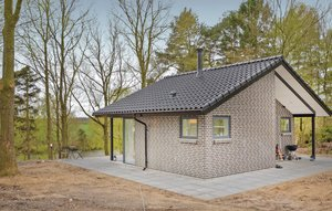 House In Brande thumbnail 2
