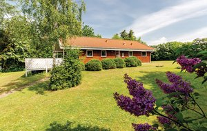 Holiday home DAN-F2122 in Drøsselbjerg for 6 people - image 54249665