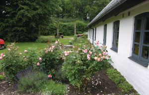 Holiday home NOV-P32015 in Hovborg for 14 people - image 54697539